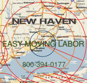 Hire pro New Haven moving help to load and unload for your move.