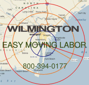 Hire pro Wilmington moving help.